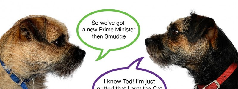 Blog from the Dogs: Brexit