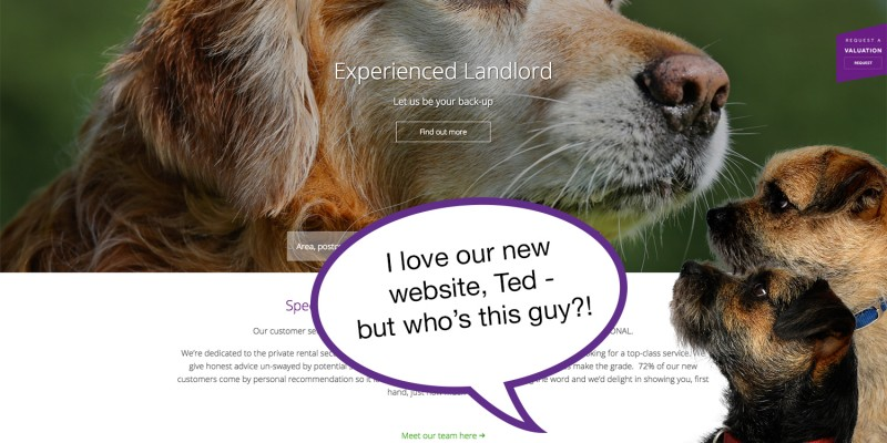 Smudge and Ted's new online home