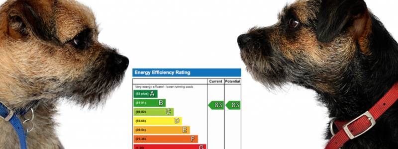 Blog from the dogs: Minimum Energy Efficiency Standards and EPCs