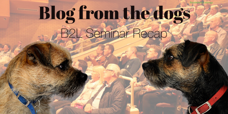Blog from the dogs: B2L Seminar Recap