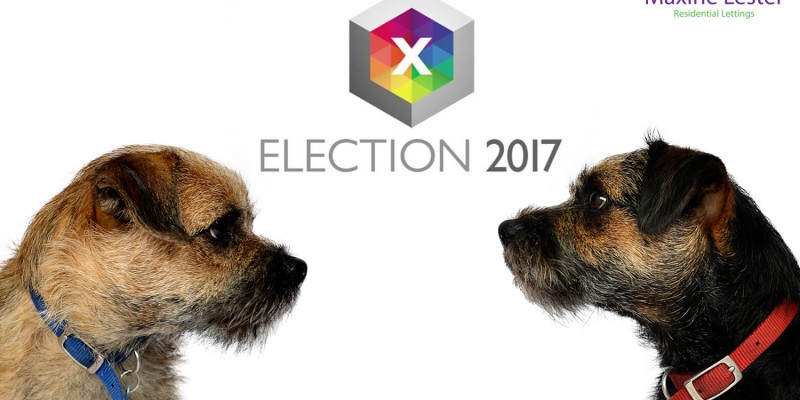 Blog from the Dogs – General Election 2017