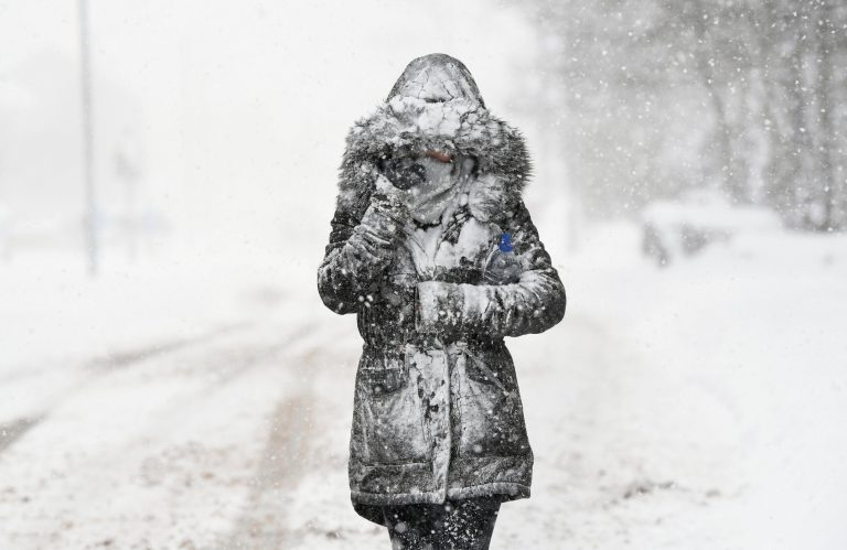 What can we learn from the 'beast from the East' freeze?