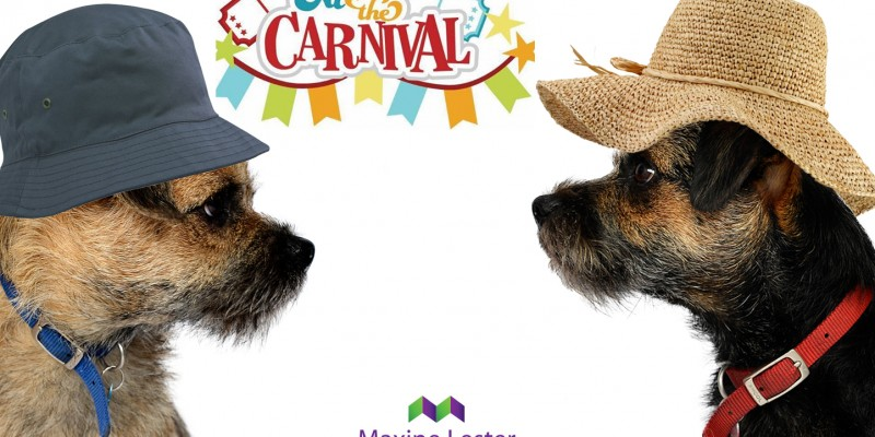 Blog from the dogs: St Ives Carnival and Music Festival