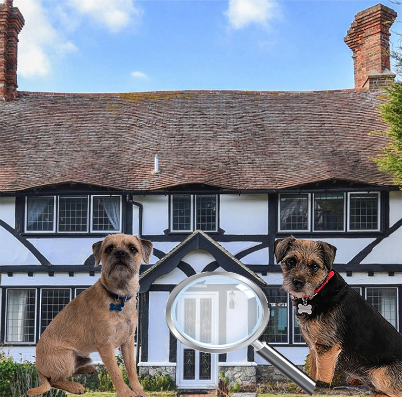 Blog from the Dogs – Inspect your Rental Property