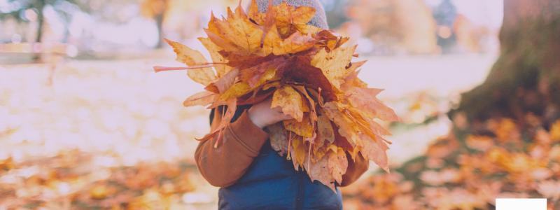 Lettings update: October begins