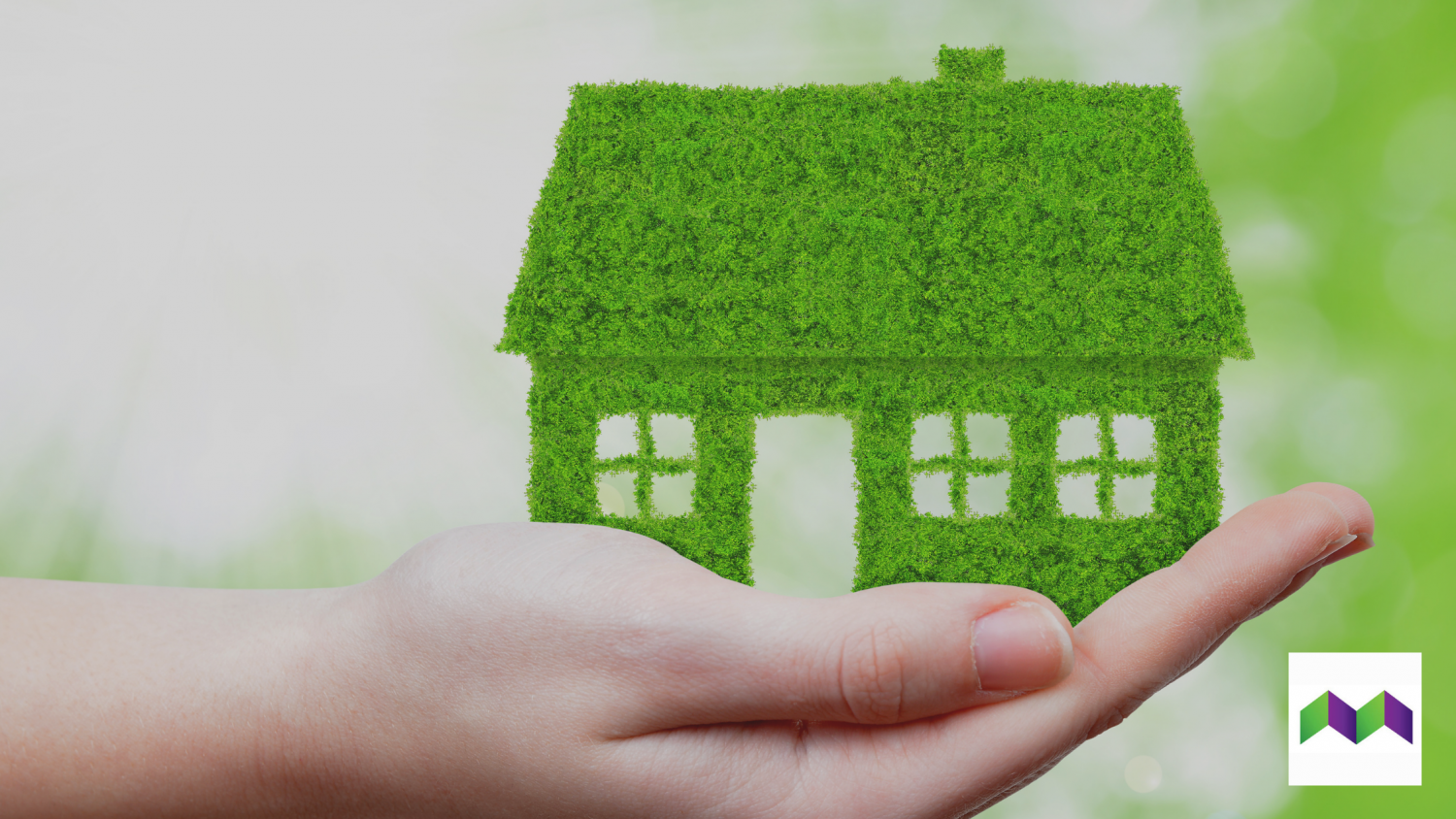 The Green Homes Grant and MEES consultation
