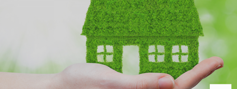 It's easy being green: The Green Homes Grant and MEES consultation